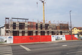 Projekt Vila Osmanthus raste